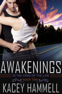 KH_Awakenings_V1_jpegfulsize